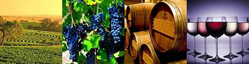 Armidale Accommodation - Wineries